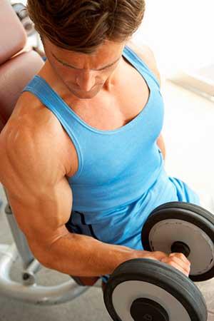 guns biceps