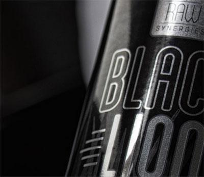 Black Lion Review