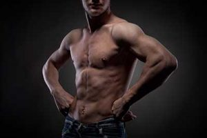 Muscle Supplements – Get The Basics Right First