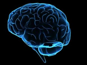 Nootropics Introduction – Cognitive Function Enhancers