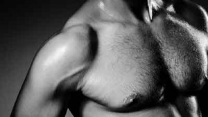Pectoral muscle